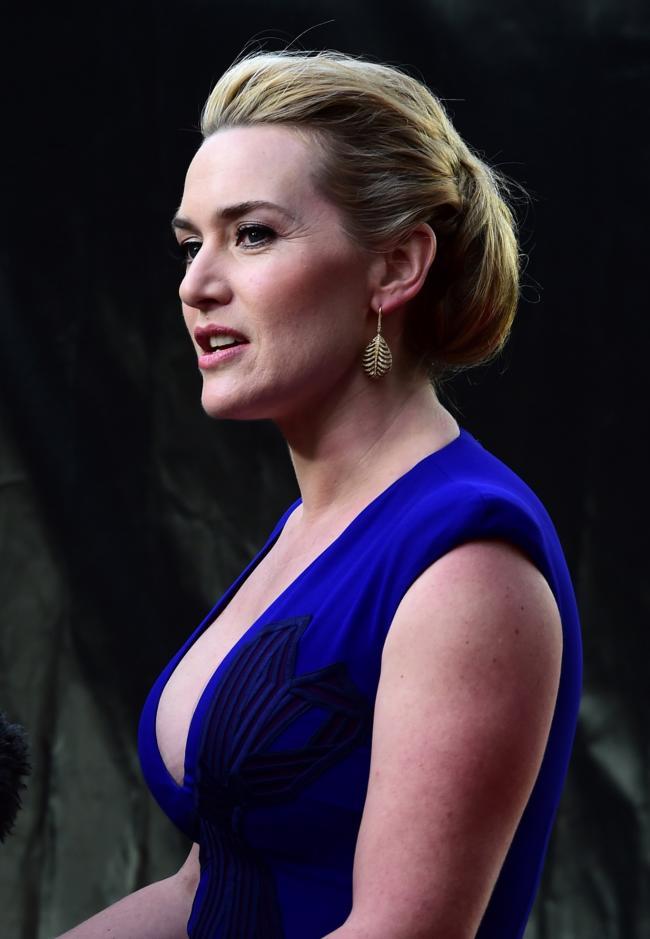 Кейт уинслет фото в сиреневом платье с глубоким декольте приоткрыла рот вид вполоборота