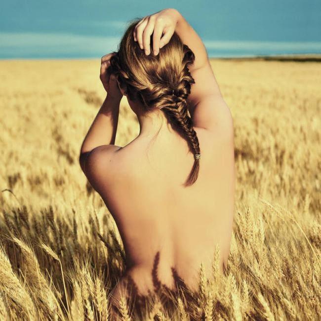 Девушка сидит в пшеничном поле вид со спины.