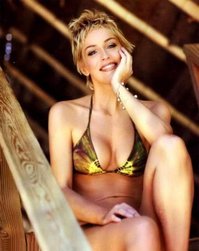 Шэрон стоун горячие в купальнике сидит подперев левой рукой щеку улыбается