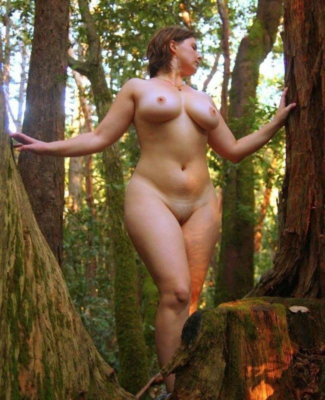 Стоит в лесу, вид снизу